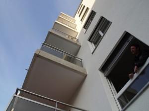 merisiers-sion (6)